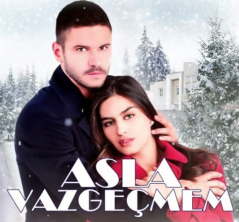 i never give up (asla vazgecmem) tv series poster