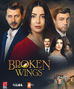 Broken Wings (Kanatsiz Kuslar - Wingless Birds) Tv Series Poster