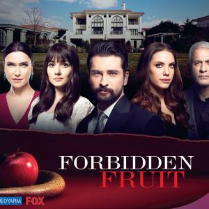 Forbidden Fruit (Yasak Elma) Tv Series Poster - HD (Wide)