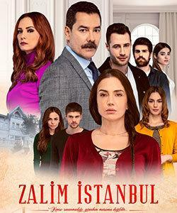 A Love Story Tv Series (Bir Ask Hikayesi)