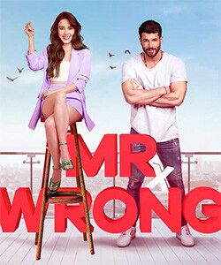 Mr. Wrong (Bay Yanlis) Tv Series